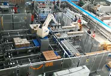50th Robotic Palletizing Cell